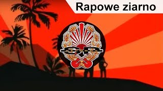 ABRADAB - Rapowe ziarno [OFFICIAL VIDEO]