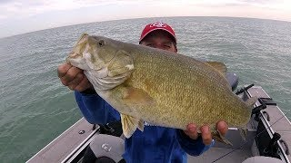 MONSTER Erie Smallmouth 6+lbs!!!
