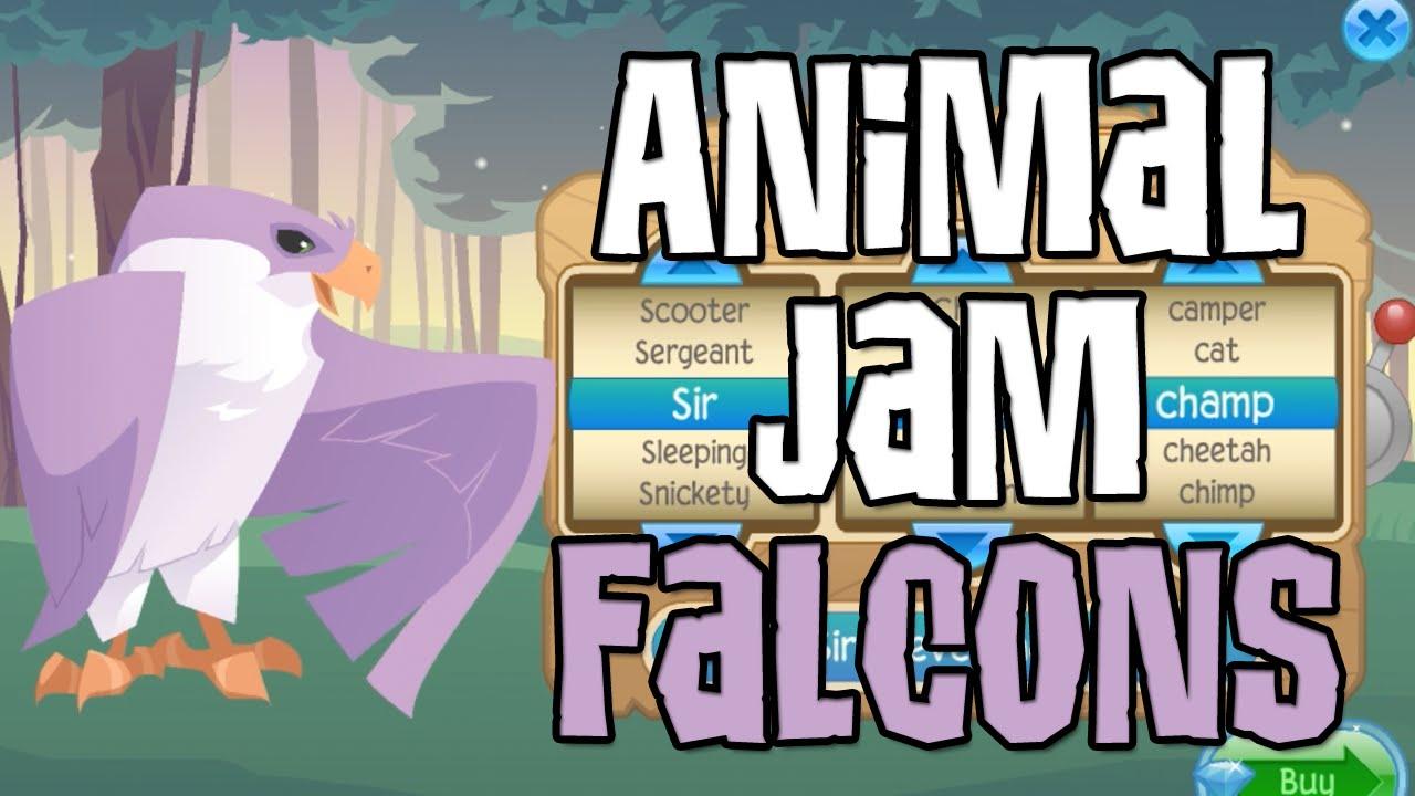 Animal Jam Codes List animal jam falcon codes