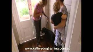 How To Train Your Dog's Behaviour When Greeting Visitors At The Door