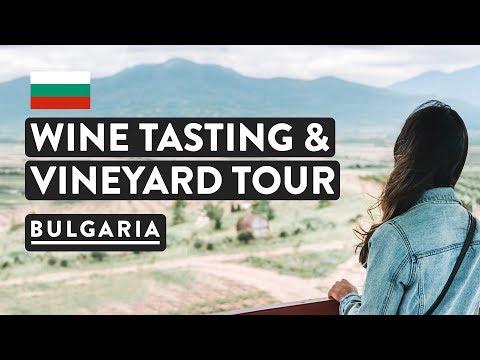 AMAZING WINE TOUR! Vineyard, Winery And Tasting | Bulgaria Wine Tours In Plovdiv