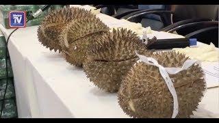 Sorok dadah dalam durian
