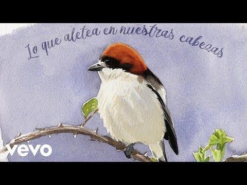 Robe - Guerrero