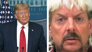 Donald trump has responded to calls for a pardon joe exotic, the colourful zoo owner at centre of netflix's breakout hit tiger king.exotic - whose re...