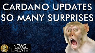 Cardano ADA - Big Updates & Growing Adoption In Spite of Price