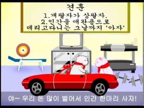 벅구 시리즈 9편 무전여행 ^^ 플래시 애니메이션,한국 애니,유머 동영상