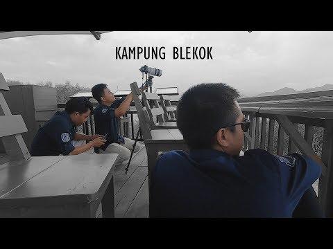 ekowisata-kampung-blekok-situbondo-,-jawa-timur,-indonesia