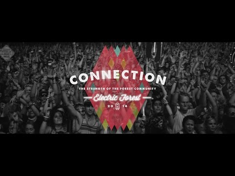 Electric Forest 2014 Part IV: Connection