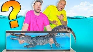 Whats in the Box Challenge !!  (UNDERWATER SEA FISH ANIMALS)