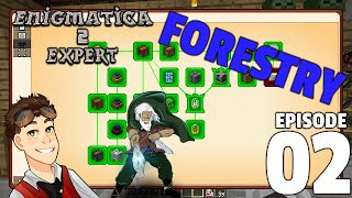 Enigmatica 2 Expert: Episode 2 - FORESTRY and DONUTS