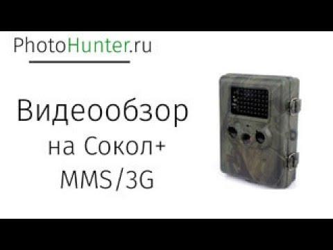 Сокол + MMS 3G