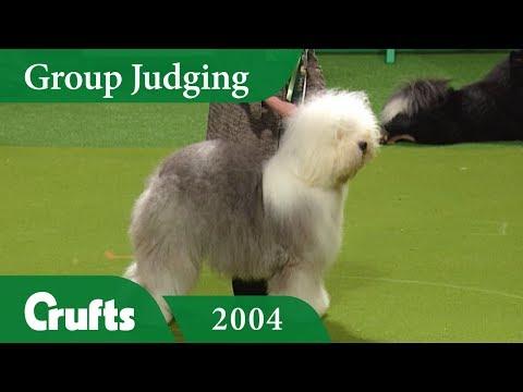 Old English Sheepdog wins Pastoral Group Judging at Crufts 2004