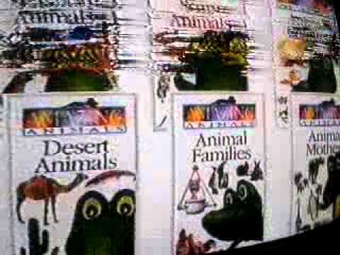 Opening to Seashore Animals UK VHS (1998)