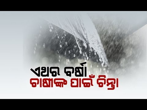 OUAT Issues Advisory Over Low Pressure Rain In Odisha