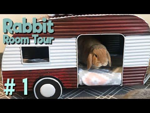 Rabbit Room Tour 1 - BEST Bunny Setups!