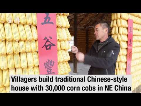 Villagers build traditional Chinese-style house with 30,000 corn cobs in northeast China