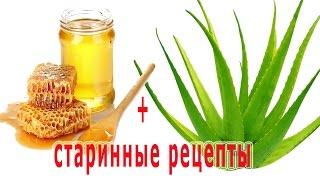 видео Алоэ при бронхите, лечение от кашля с мёдом рецепты лекарств. Как правильно приготовить и применить народное средство