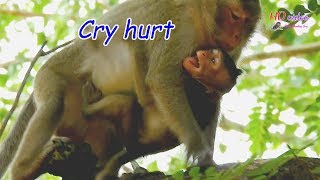 MG!! Poor David cry loudly angry mom walk   Pity David cry cuz hurrt too much   BMC#2713 thumbnail