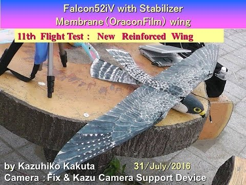 Falcon52iV with AutoPilot : 11th  Flight Test :New Reinforced  Wing
