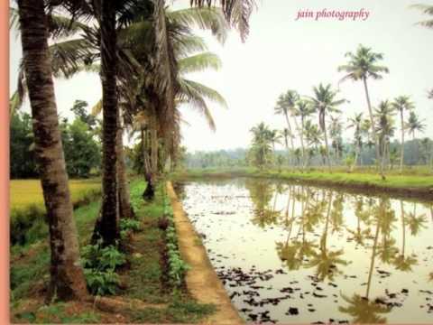 Kaipuzha.Kerala,God's Own Country