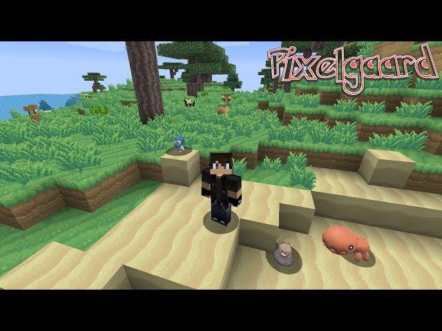 A Brand New Chapter Pt  1: Pixelgaard Lp Ep #1 Minecraft