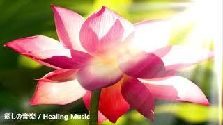 「深い静かな癒し」悪いエネルギーを取り除き 心身をリラックスさせ ストレスと不安を解放する 浄化瞑想音楽 15分|15 Min. Meditation Music Relax Mind Body