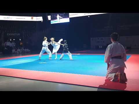 Romanian Fusion Art at World Fudokan Karate Championship 2017