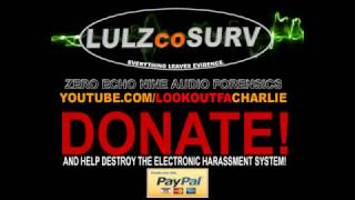 TARGETS! HELP DESTROY THE ELECTRONIC HARASSMENT SYSTEM! HELP!