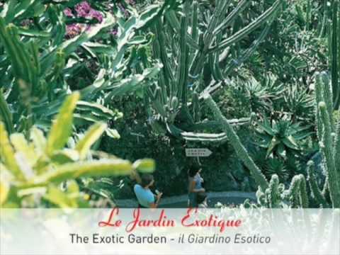 les jardins de Monaco - Monaco's garden