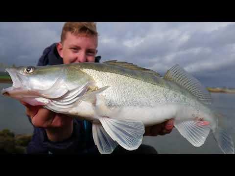 river zanders - fishing the dutch rivers (fishing.024)