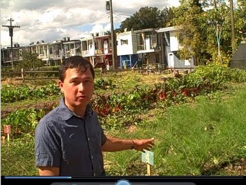Urban Farm in Baltimore Grows Food & Teaches Community Garde