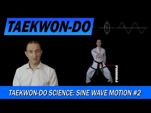 Taekwon-Do Science: Sine Wave Motion #2