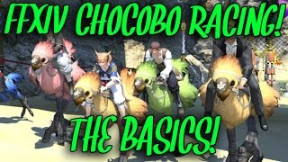 FFXIV Chocobo Racing: The Basics! (+Selfie Competition!)
