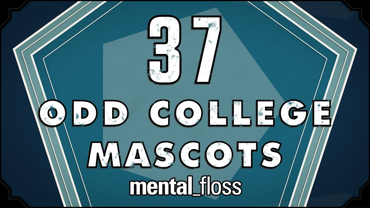 37 Odd College Mascots - mental_floss on YouTube (Ep. 22)