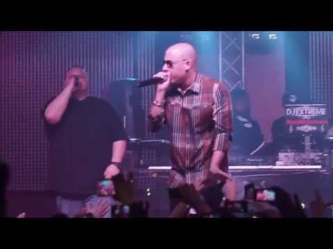 Cosculluela live