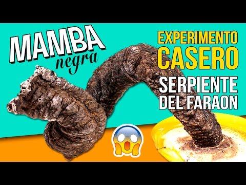 ¡¡Experimento ASOMBROSO!! 🐍🐍 SERPIENTE del FARAÓN o MAMBA NEGRA * Experimentos de QUIMICA caseros