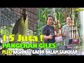 Suara Burung Gopro  Juta Pangeran Giles Pleci Nasional Gacor Buka Paruh Dalam Sangkar Rg Bf  Mp3 - Mp4 Download