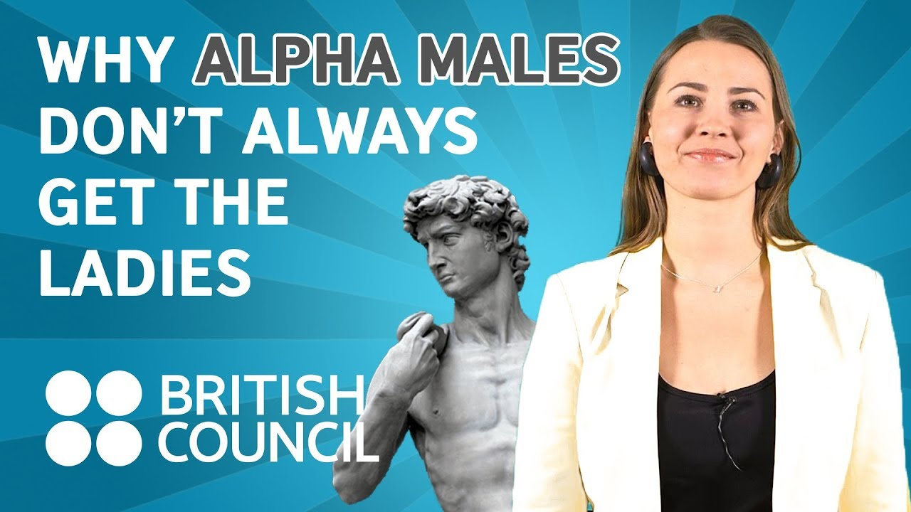 Why Alpha Males Dont Always Get The Ladies Famelab Youtube