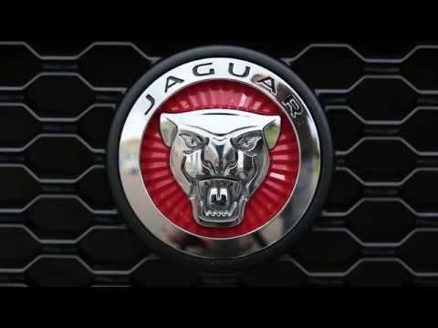 Jaguar F-PACE - Большой тест-драйв