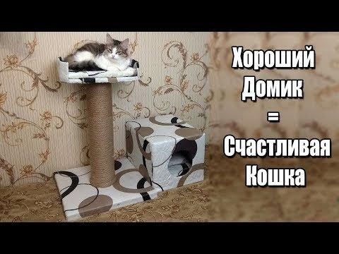 Дом для кошки своими руками чертежи из фанеры видео и чертежи