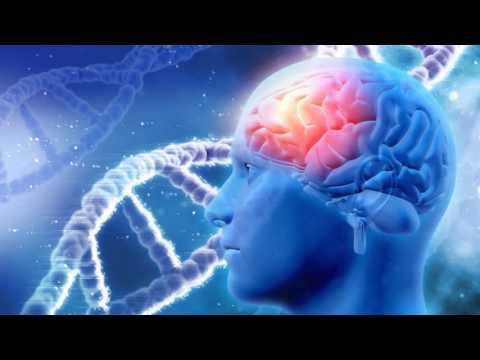Music to Improve MEMORY   Alpha Waves   SUPER INTELLIGENCE