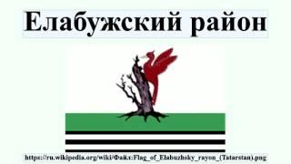 Елабужский район