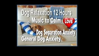 12 Hours of Dog Anxiety Calming with Beautiful music (tested) positive calming