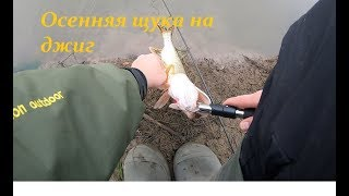 Осенняя рыбалка на джиг. щука . 2019