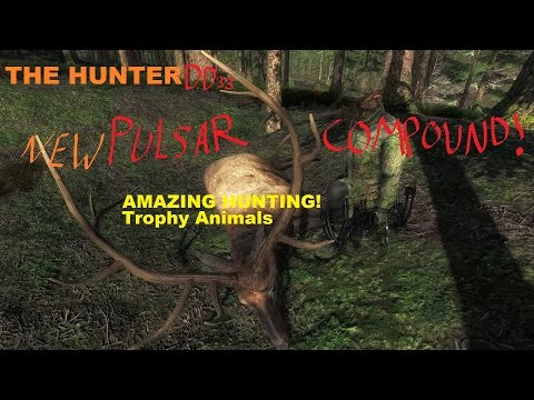 THE HUNTER: DD33 The Power of The NEW Pulsar Compound BOW!!!