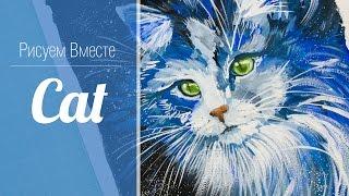 Speed Painting. Cat