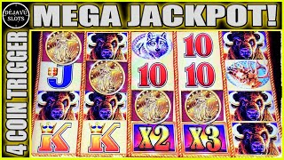 MY BIGGEST JACKPOT ON BUFFALO GOLD