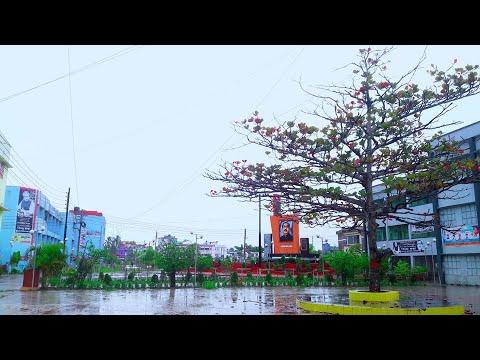 Wonderful view of Cumilla Victoria Gov. College Campus || কুমিল্লা ভিক্টোরিয়া সরকারি কলেজ