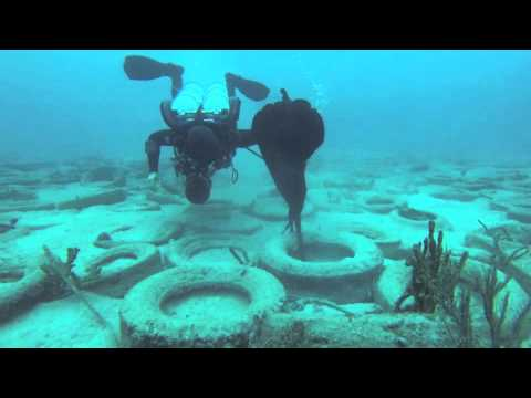 Project Baseline Gulfstream Survey Dive Of the Osborne Tire Reef (Long Version - ATV)