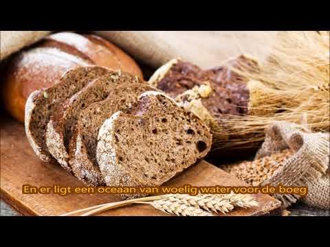 Bart Peeters - Brood voor morgenvroeg (lyrics)